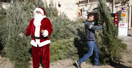 La Municipalidad de Jerusalem distribuirá árboles de Navidad