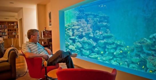 El israelí que nada en el salón de su casa