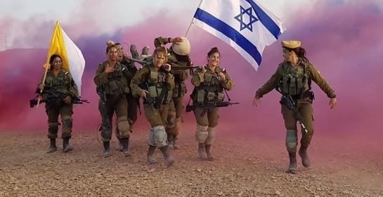El resumen anual de las Fuerzas de Defensa de Israel