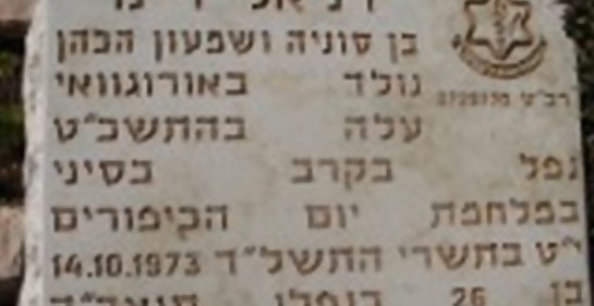 a matzeiva en la tumba de Daniel Wajner (z!l)