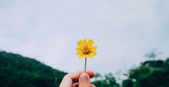¿La gente exitosa es feliz o es que la gente feliz es exitosa?