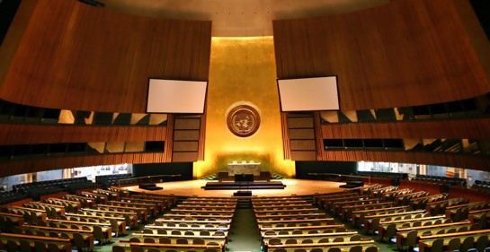 Lanzan petición para expulsar a Venezuela del Consejo de DDHH de la ONU