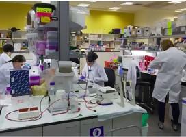 Poniendo los puntos sobre las íes en el tema de la vacuna israelí para el Corona