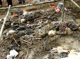 https://commons.wikimedia.org/wiki/File:Srebrenica_Massacre_-_Exhumed_Grave_of_Victims_-_Potocari_2007.jpg#/media/Archivo:Srebrenica_Massacre_-_Exhumed_Grave_of_Victims_-_Potocari_2007.jpg
