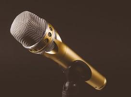 La voz de Ana Jerozolimski en Radio Sarandí