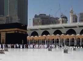 Arabia Saudita: la gallina de los huevos de oro