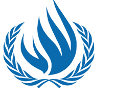 7 Problemas con el Consejo de Derechos Humanos  de la ONU