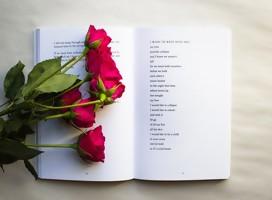 Poemas de la poeta israelí Tali Weiss