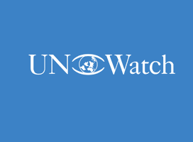 7 Problemas con el Consejo de Derechos Humanos
