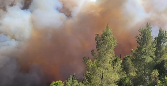 Tragedia con suerte, al lograrse controlar el incendio en los alrededores de Jerusalem
